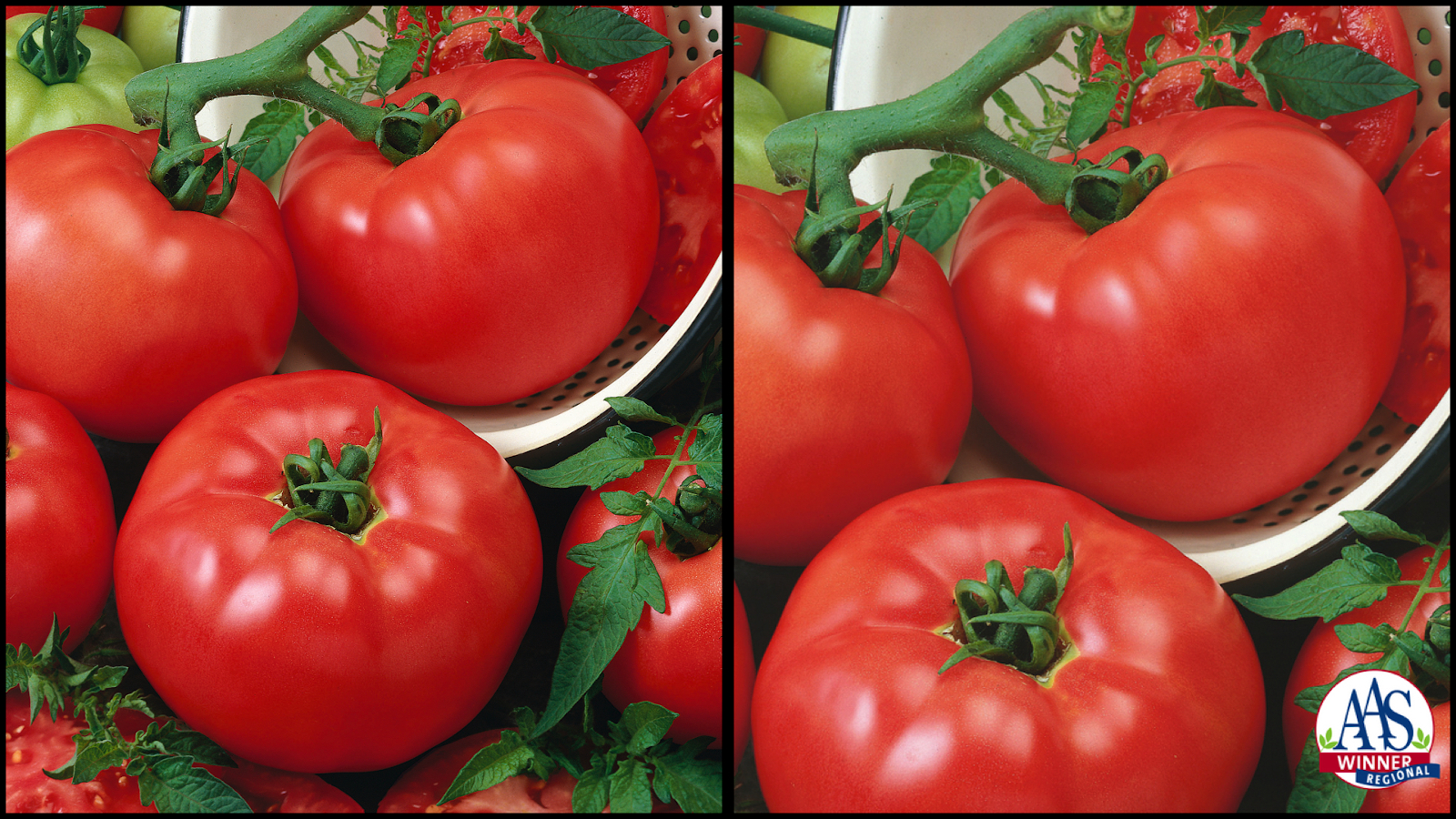 Tasty, juicy tomatoes right from your porch